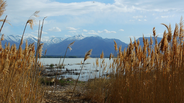 Utah Lake near Saratoga Springs. (Jim Mullhaupt/Flickr)